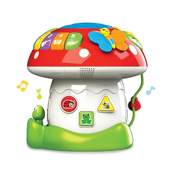 All-in-one Activity Mushroom